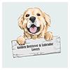 Labrador and Golden Retriever Lovers